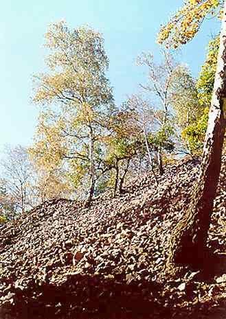 suťové pole pod Kamennou