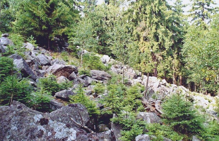 kamenné moře v severním svahu Hřebenů