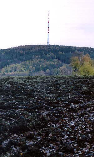 věž Cukrák