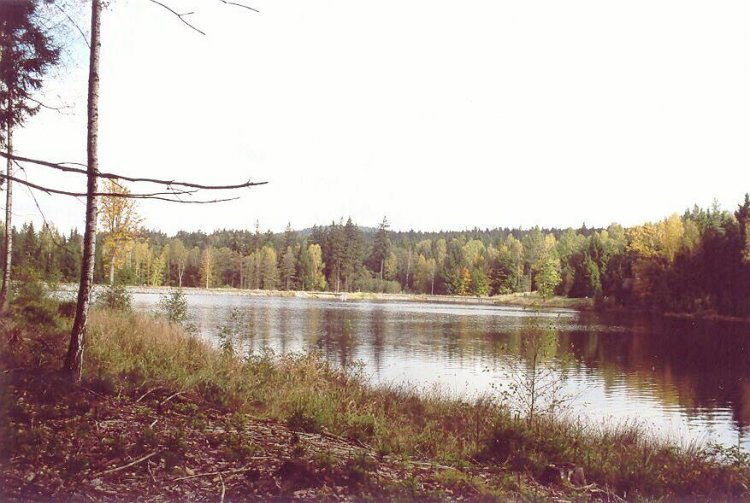 rybník Pod Valdekem