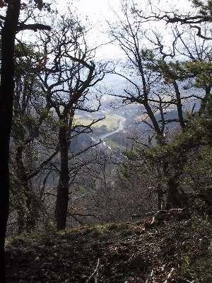 výhled do údolí Litavky