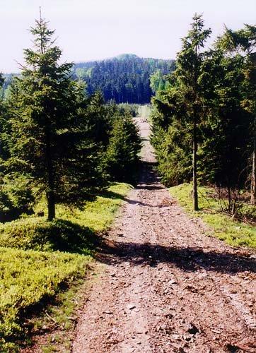 Hřebenovka mezi Třemšínem a Henštěm - z Křemelu na Holý vrch