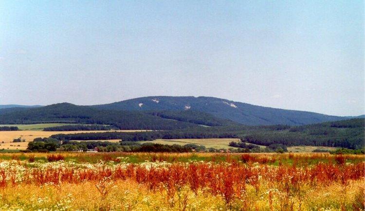 od cesty Hořovice-Hvozdec