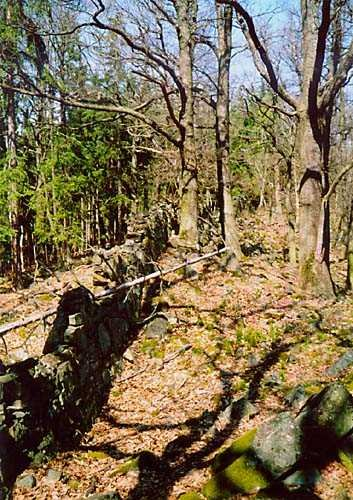 kamenná zídka mezi Provazcem a Holým vrchem
