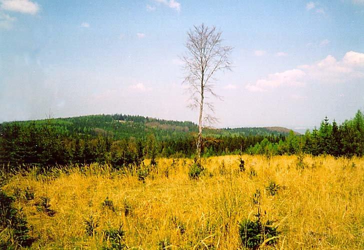 pohled na sever - severozápad (Malá a Velká Baba)