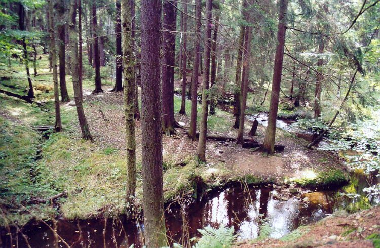 Červený potok