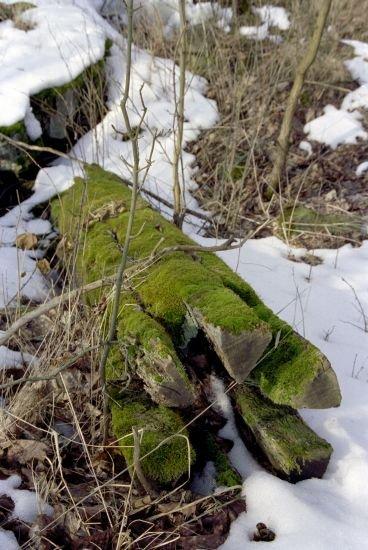 dřevěný artefakt