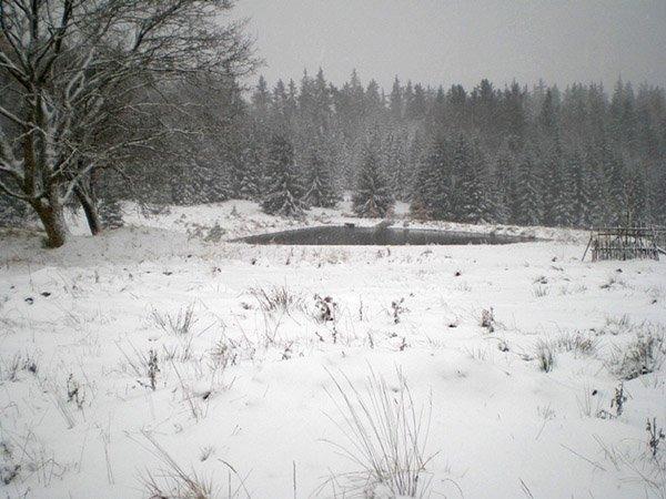 rybníček na Boru