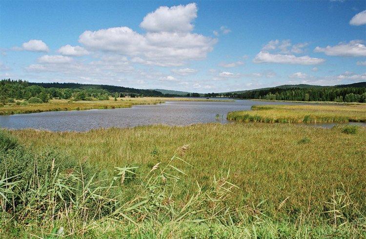 Dolejší Padrťský rybník-Pohled z hráze Hořejšího rybníka