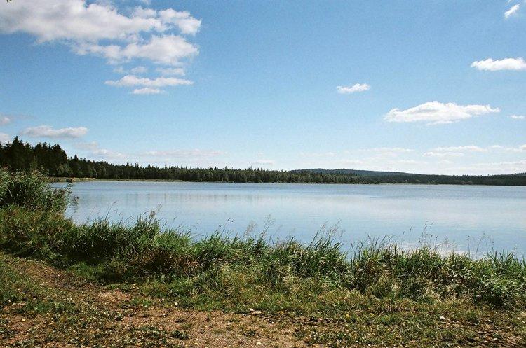Božský klid u Hořejšího Padrťského rybníka