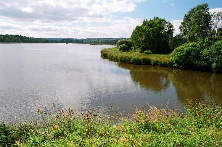 Dolejší Padrťský rybník-pohled směrem k Hořejšímu rybníku
