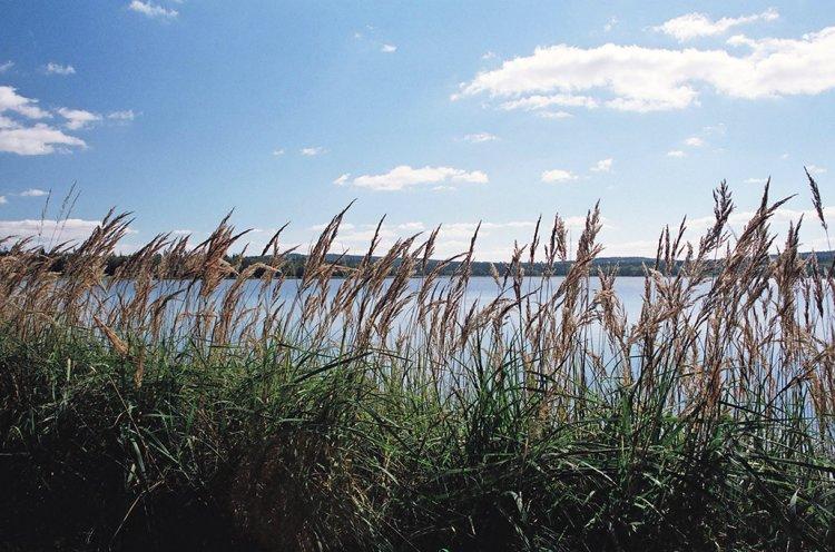 Hořejší Padrťský rybník