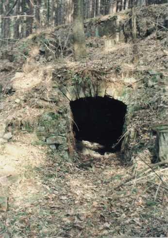 pozůstatky po hornické osadě Giftberg