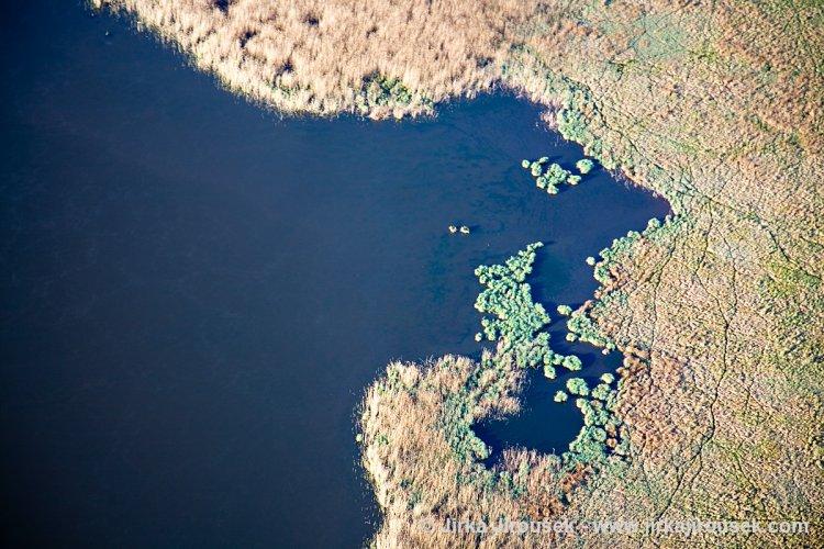Dolejší Padrťský rybník