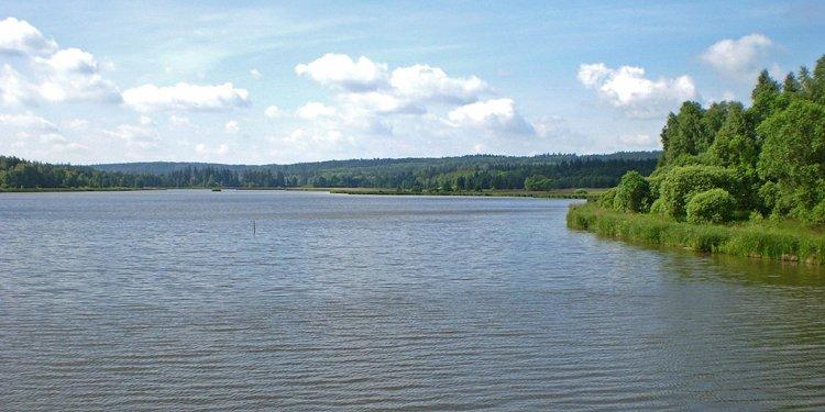 Dolejší rybník