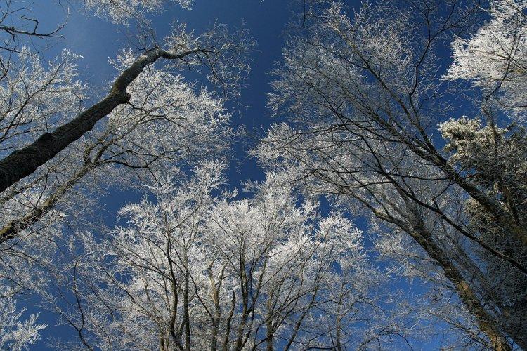 zima na Hengstu