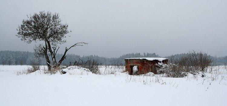 Zimní Bernhard