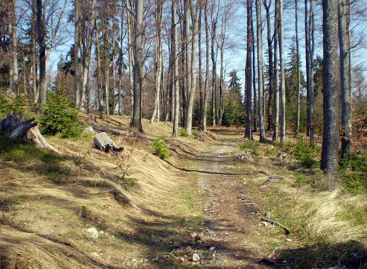 hřebenová cesta na Hengstu