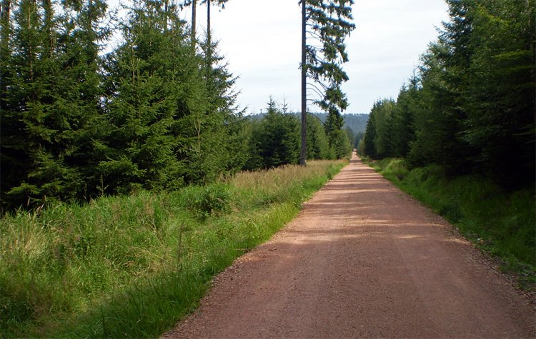 cesta pod Jahodovou horou
