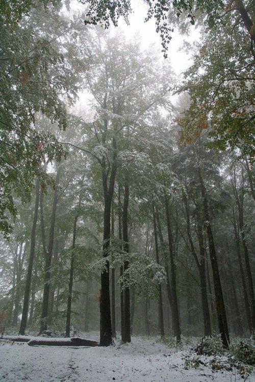 Podzim 2009