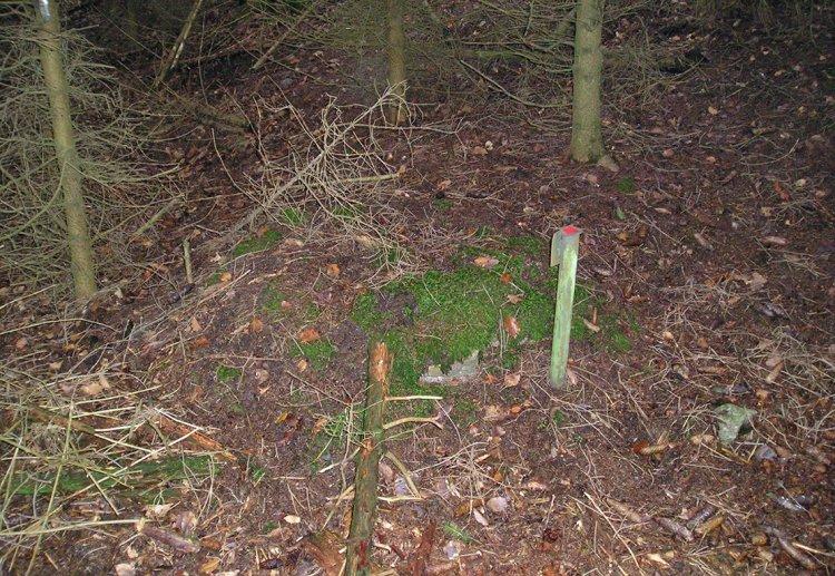 vegetací zakrytou šachtu prozrazuje tyč