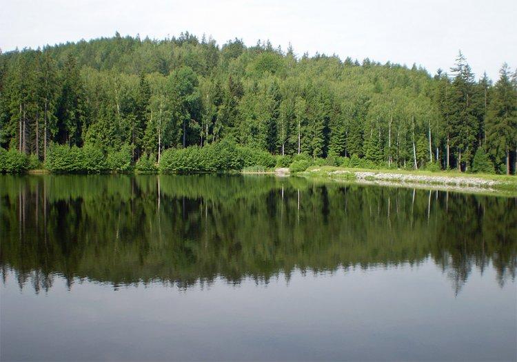 Podvaldecký rybník