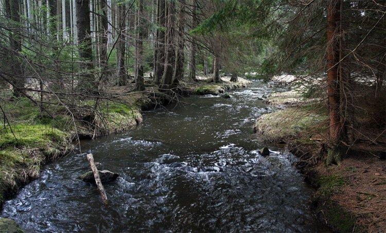 Padrťský potok alias Klabava kousek pod pláněmi