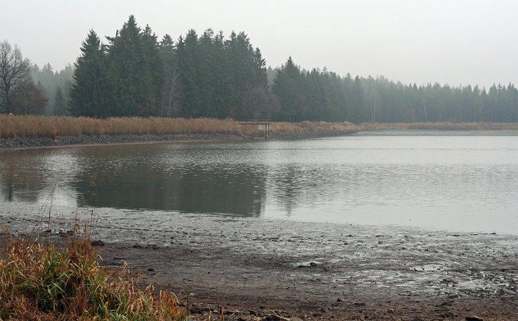Hořejší P. rybník polovypuštěný