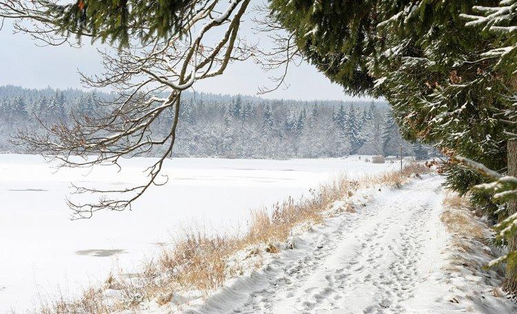 Hráz Hořejšího Padrťského rybníka