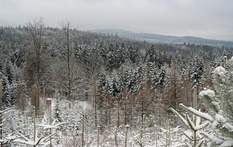 Vyhlídka z cesty mezi Lipovskem a Hlavou