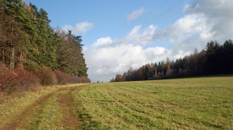 cestou na Ostrý od Felbabky