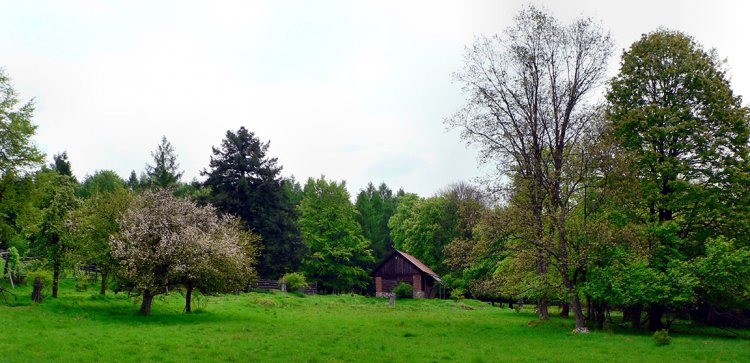 jaro na Skelné Huti
