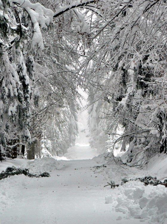 zima - Třemšínsko