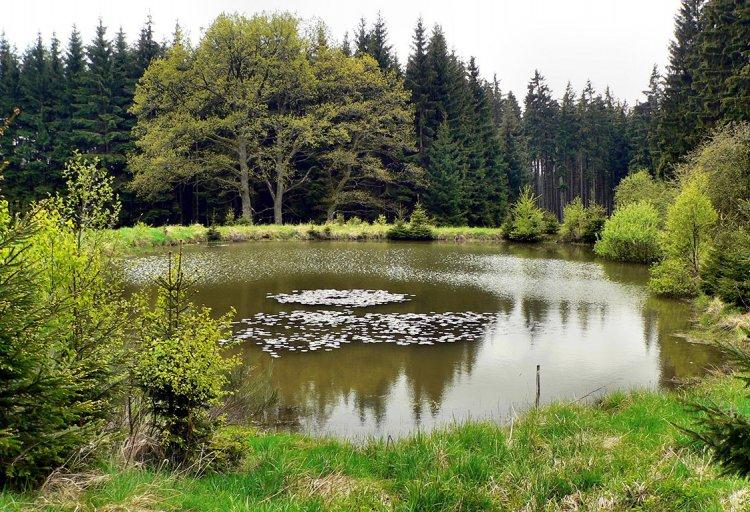 rybníček Paseka