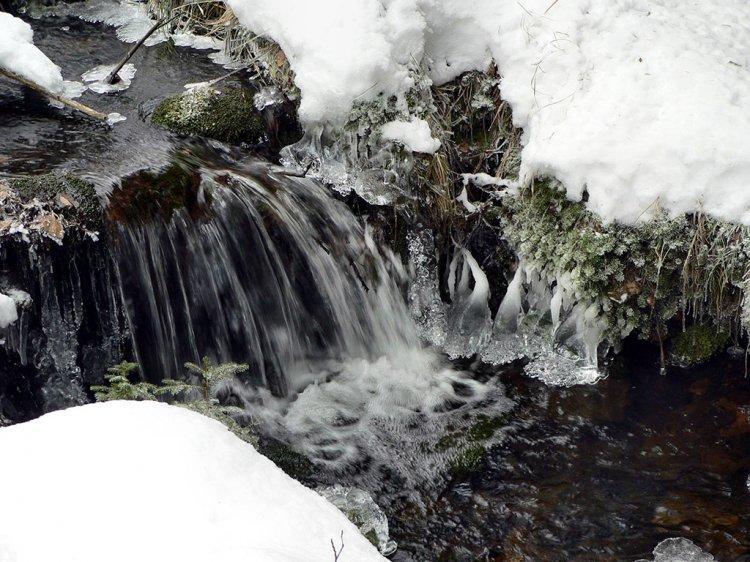 Mourový potok