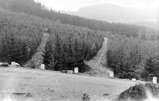 lesní průseky: vlevo pozorovací, vpravo palebný (zdroj: www.bunkry.cz, 1938 / autor neznámý)