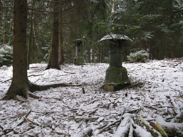les na to, co je pod ním, skoro zapomíná
