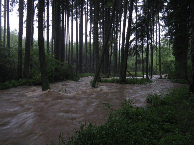 Bradava 06/2013