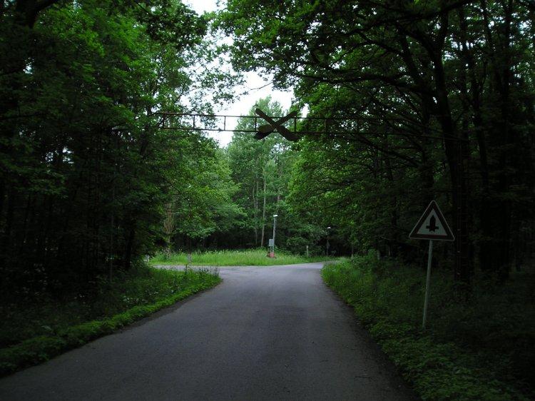 Kreslovna 2010