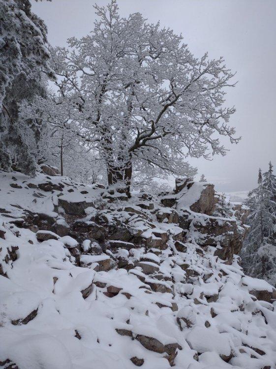 zimní výdech na Krkavčích skalách