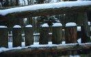 zimní háv jedné oplocenky
