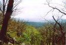 pohled směrem k oboře Aglaia na západ