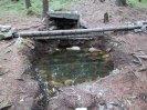 studánka (plná vody)