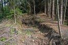 Poslední desítky metrů náhonu nad pilou