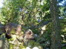 skalky na Zavírce