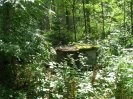 Stará studna u střelnice Kolvín