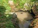 Studánka na jednom z pramenů Ledného potoka