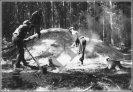 pravděpodobně brdský milíř kolem roku 1930 (VHSB)