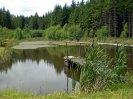 rybníček v údolí Struhového potoka