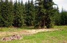 prázdno po stodole u Václavky
